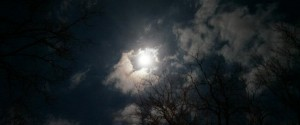elf moon